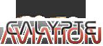 Calypte Aviation